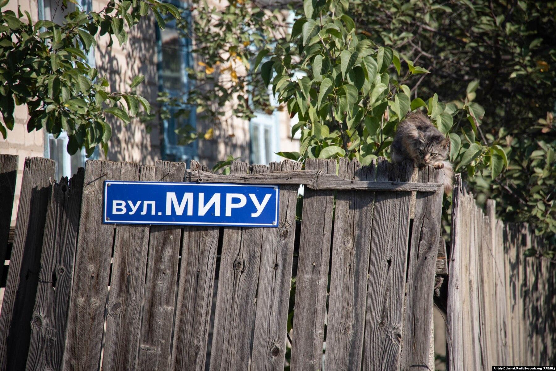 Donbas Frontliner / Сірий кіт на перкані будинку по вулиці Миру у селі Кримському, вересень 2021 року